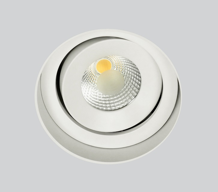 Frameless IP 150 Round Move Cob Led_photo 1